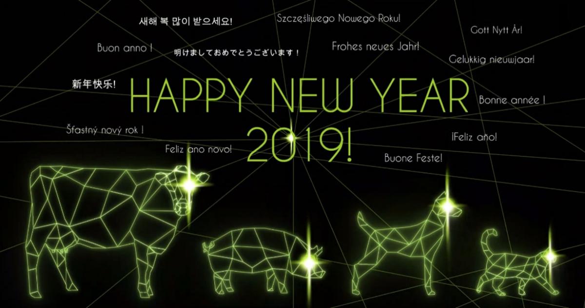 Schöne Feiertage und ein frohes neues Jahr 2019